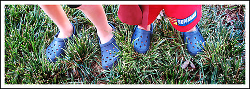 Crocs sure sign of summer copy