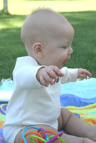 Look ma no hands web